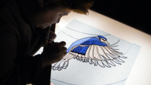 Costanza's Blue Jay Window