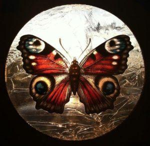 La Farfalla di Judson Portzer