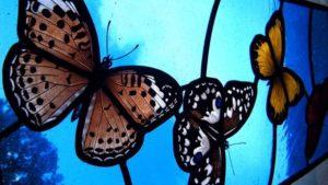 Farfalle in Vetrate Artistiche