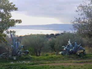 Lago di Bolsena dal Giardino