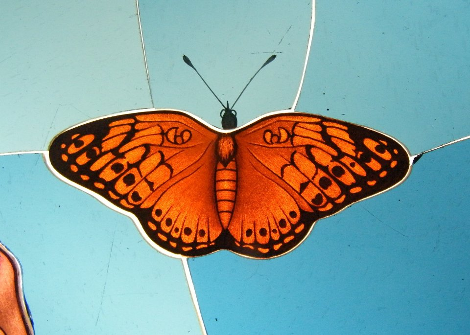 Glass Painting Orange Butterfly