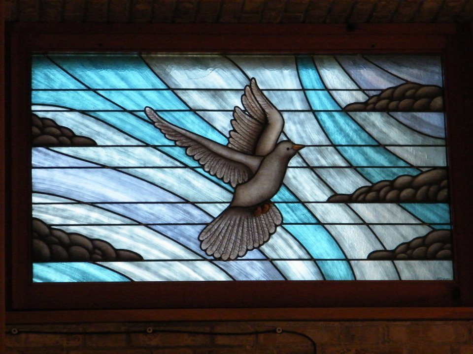 Stained Glass Dove - Fano