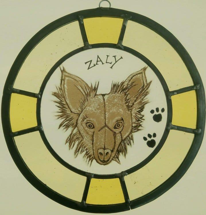 Course Dog Portrait